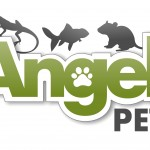 Pet shop, pet shop Gloucester, reptile shop, gloucester, reptile shop, snakes, lizards, spiders
