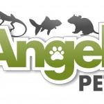 Pet shop, pet shop Gloucester, reptile shop, gloucester, reptile shop, snakes, lizards, spiders
