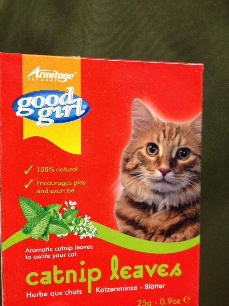 pet shop Gloucester catnip