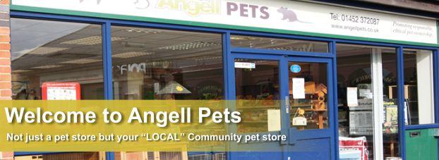 Pet shop Gloucester