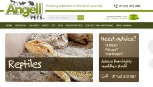 angell pet website
