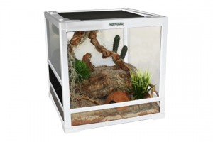 Komodo products glass vivarium