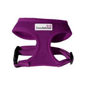 doodlebone harness purple