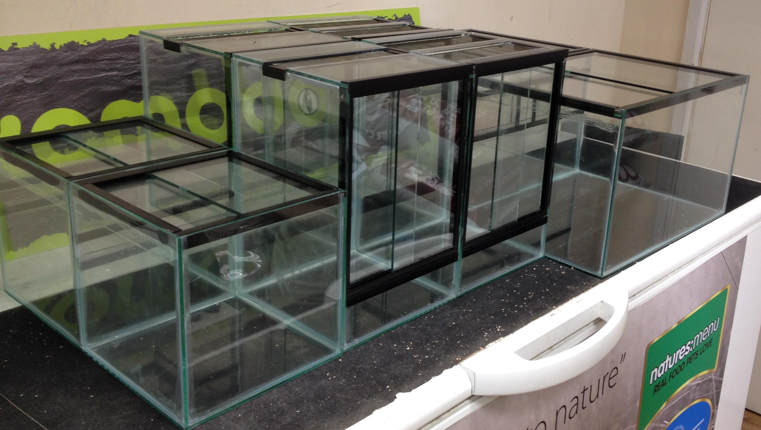 Glass Tank Angell Pets The Friendliest Pet Shop In Gloucester