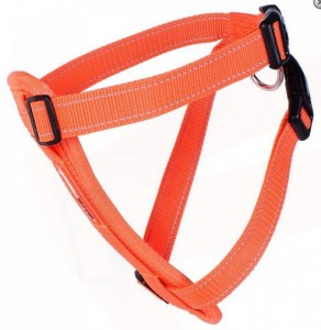 Ezy Dog Harness Blaze Orange