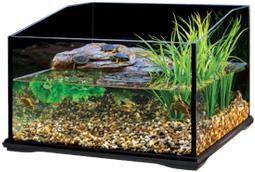 exo terra turtle terrarium