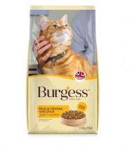 burgess adult