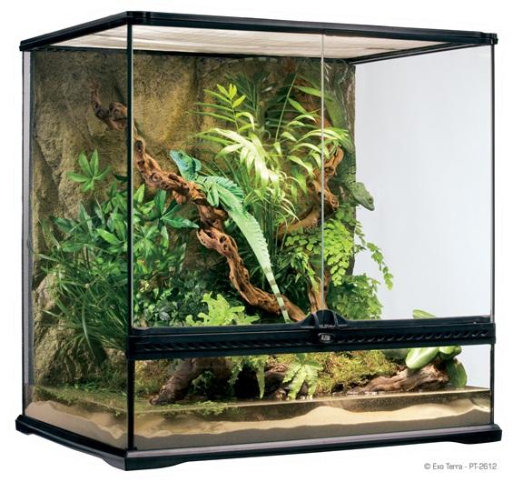 Turtle tank terra exo