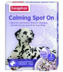 calming-spot-on-dog