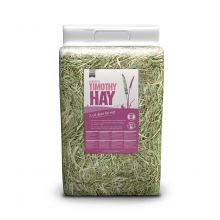 timothy-hay