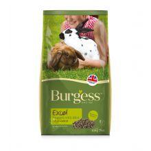 burgess excel adult