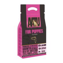 AATU puppy