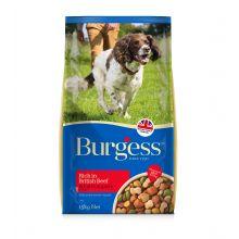 Burgess dog beef