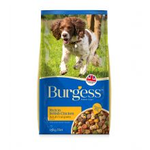 Burgess dog chicken