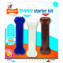 nylabone puppy starter set