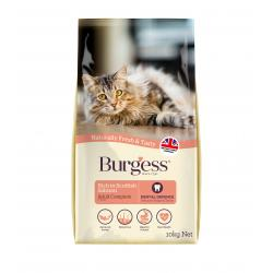 Burgess Cat Salmon