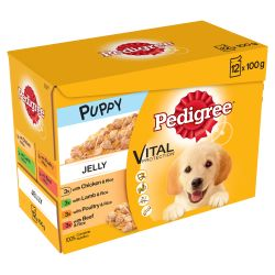 Pedigree Puppy Pouch In Jelly