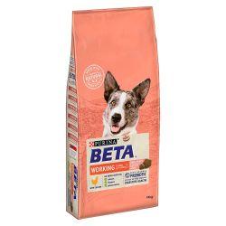 Beta Working Dog