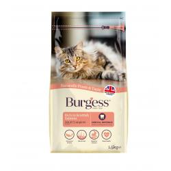 Burgess Cat Scottish Salmon